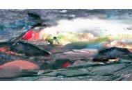 Illusionistische-Landschaften-XIII